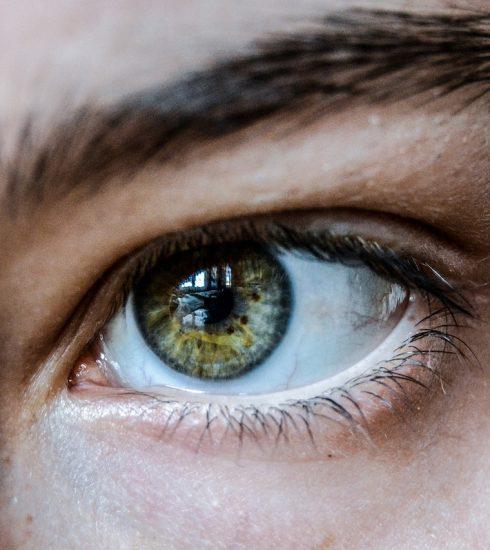 Eye Green Eyelashes Eyebrow Eyelid  - tembel_tasarimci / Pixabay