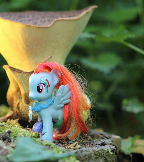 My Little Pony Toys Children  - furbymama / Pixabay